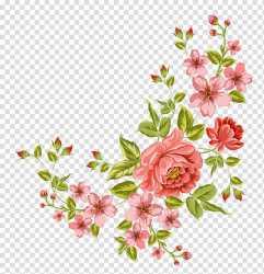 Flower Corner flower pink flowers transparent background PNG clipart HiClipart