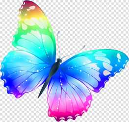 Blue and pink butterfly Butterfly Color Butterfly transparent background PNG clipart HiClipart