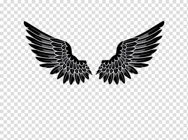 black wings sticker logo