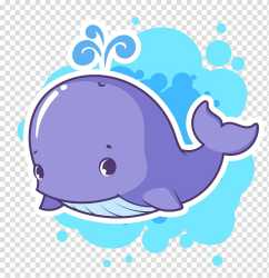 Cartoon Whale transparent background PNG cliparts free download HiClipart