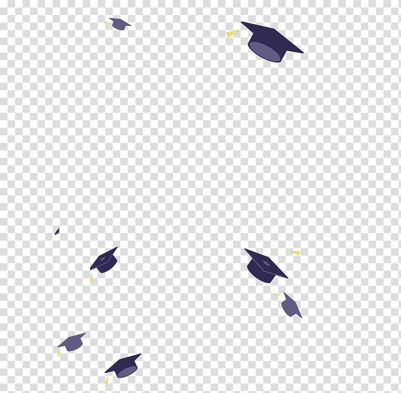 Black and gray mortar boards illustration, Bachelors