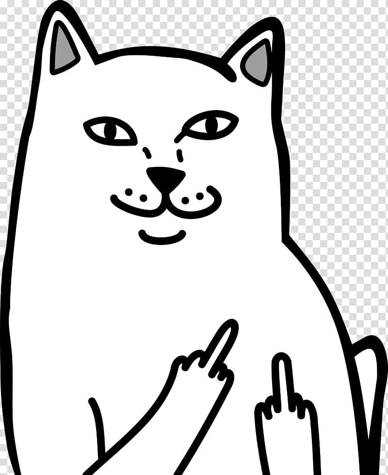 Cat Holding Up Middle Finger : holding, middle, finger, Finger, Transparent, Background, Cliparts, Download, HiClipart
