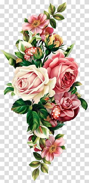beach rose euclidean flower