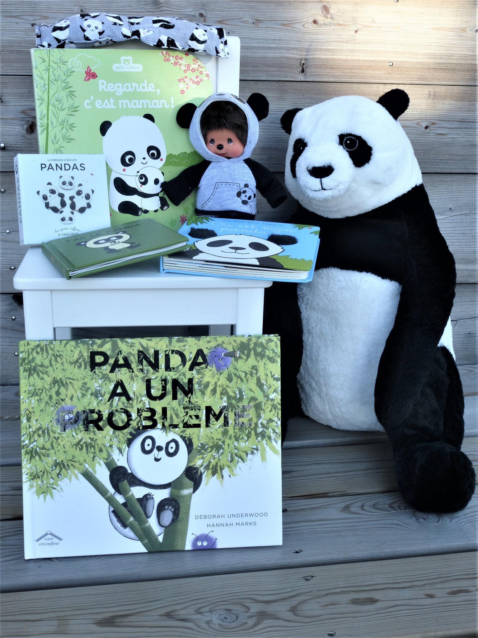 Chanson Je Ne Suis Pas Un Panda : chanson, panda, Album, Messages, Petite, Plume