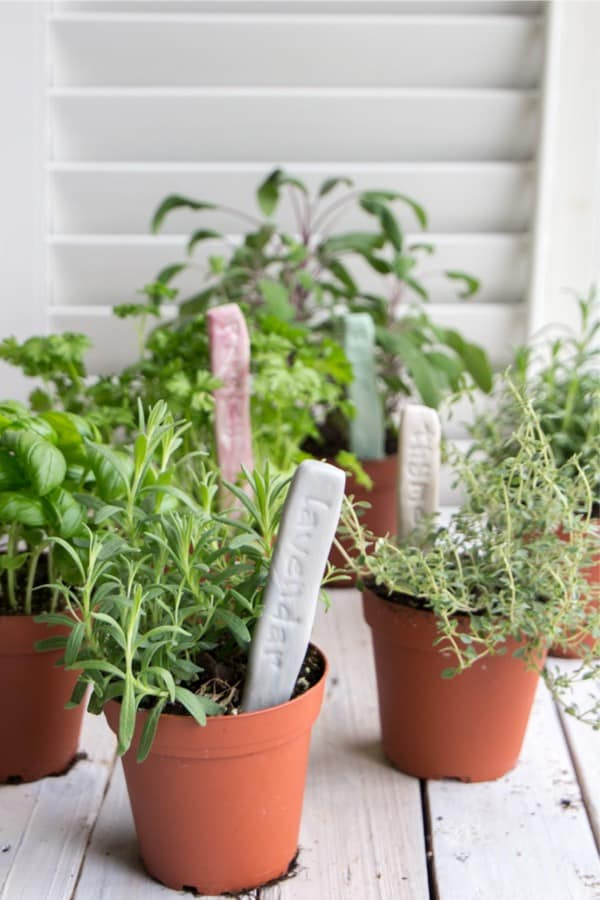 fast dry clay craft for garden markers