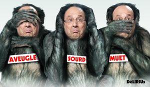 Bonobo Hollande DéLiRiUs