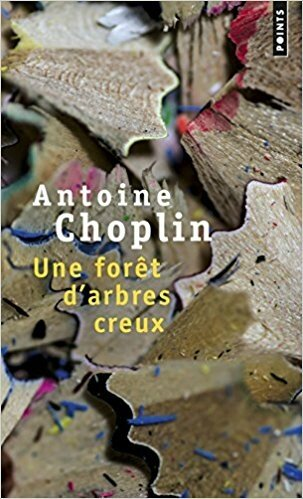 Une forêt d'arbres creux Antoine Choplin