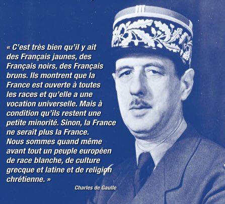 Le Général, la France et nous - Mesrevuesdepresse