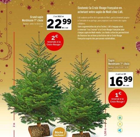Bon Plan Où Acheter Un Sapin De Noël Naturel Pas Cher En