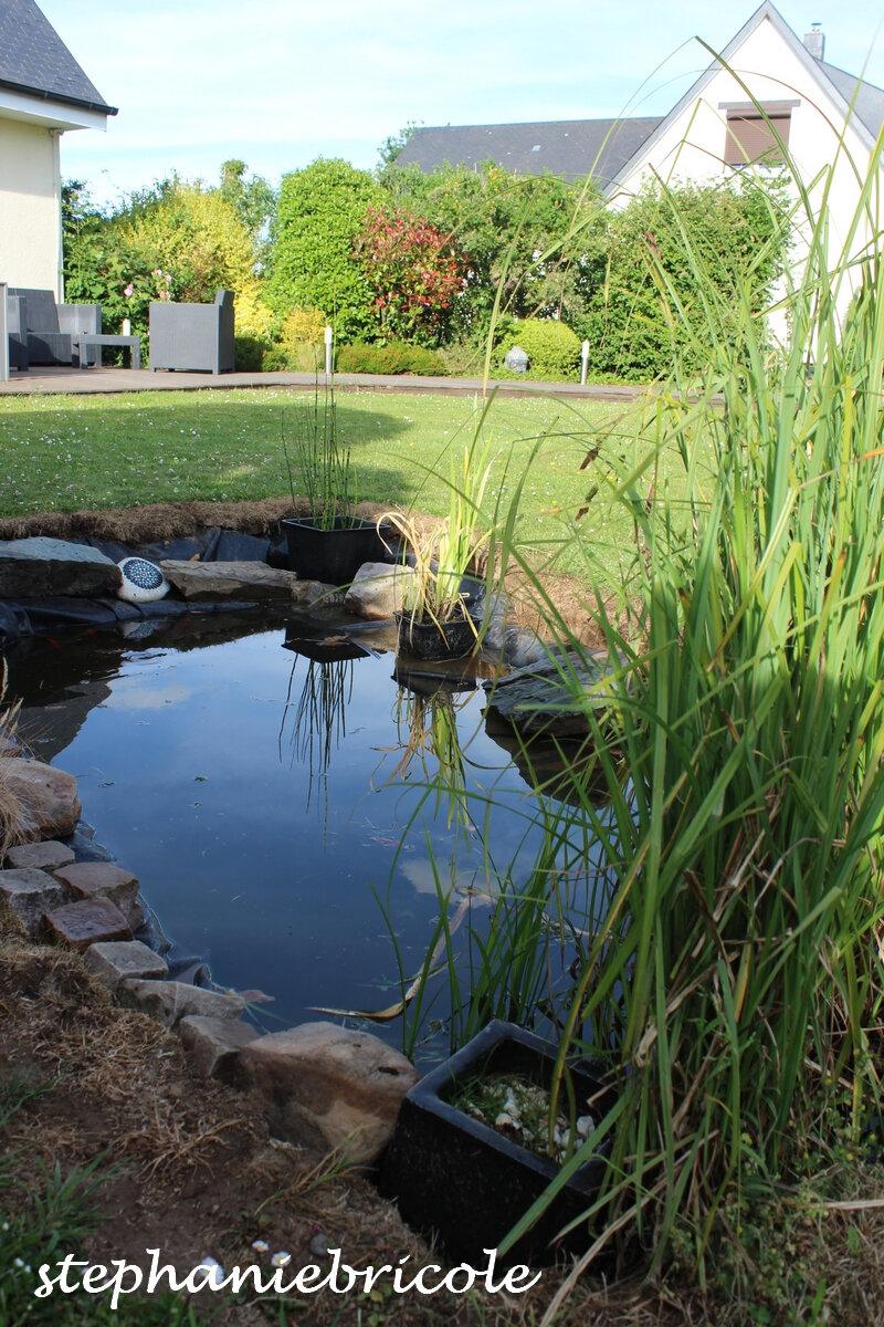 amenager un bassin dans le jardin