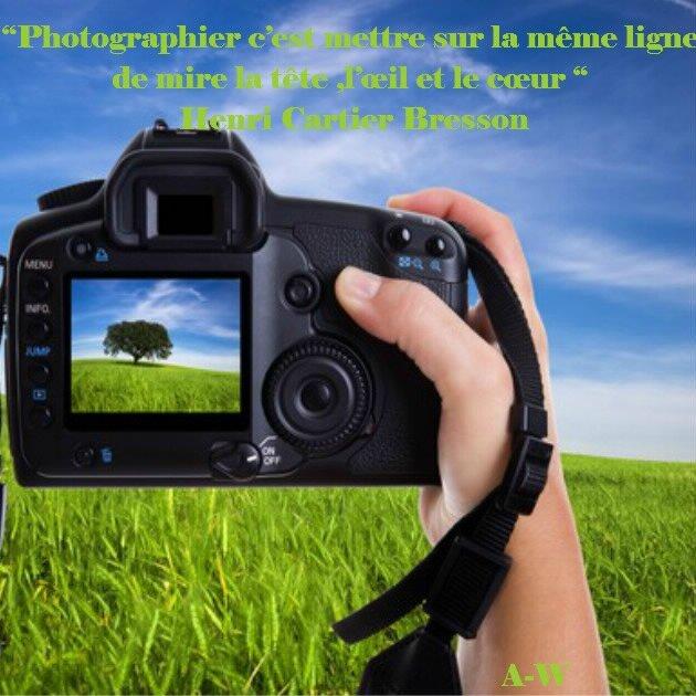 bloggif_5849f8b86e4f7