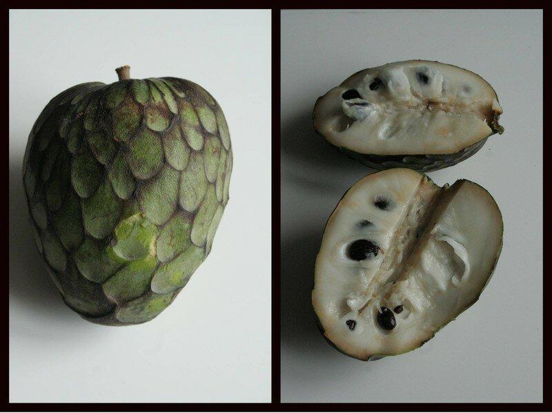 Dcouvertes fruites  Beau  la louche