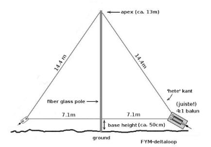 FYM-delta-loop