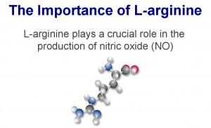 l-arginine-importance