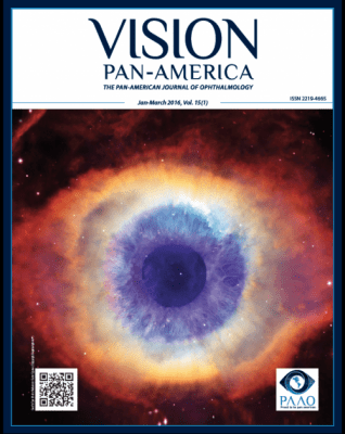 Vision Pan-America vol. 15 cover