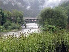 im Regen an der Sava