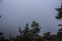 Den efterfølgende morgen er der tåget i en sådan grad at vi er lettere nervøse for om vi overhovedet kan orientere os i søen, eller om vi skal sejle efter kompas. Nervøsiteten forsvinder da straks da solen efter morgenmaden, allerede er ved at tage magten over tågen.