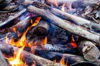 Fasanen er lagt ind i bålet og bålet bygges ovenpå fasanen, således at der er ild under, rundt om og oven på den.