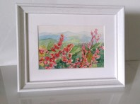 Framed, flowers and mountains. 22.5 x 17.5 cm. (800x594)