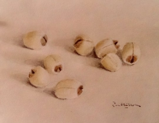 seeds, painting (640x498)