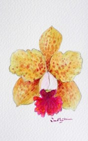 learn-how-to-paint-orchid-watercolor-orchid-painting-499x800