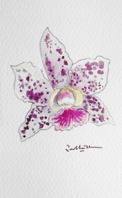 orchid-painting-gift-for-event-local-artist-492x800