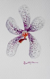 orchid-painting-singapore-artist-20170115_080728-510x800