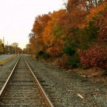Fall Railroad Tracks