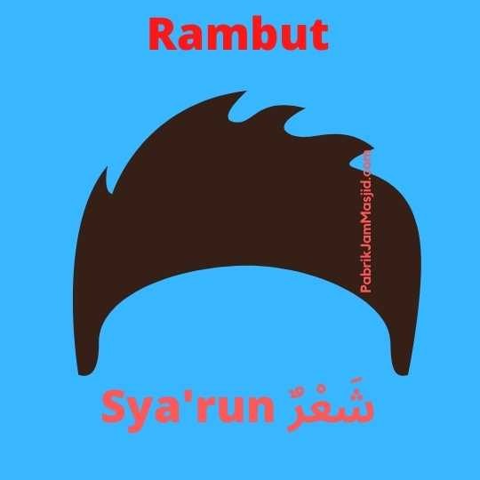 Sya'run artinya Rambut bahasa arab