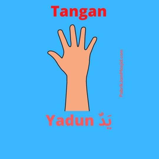 Yadun artinya tangan bahasa arab