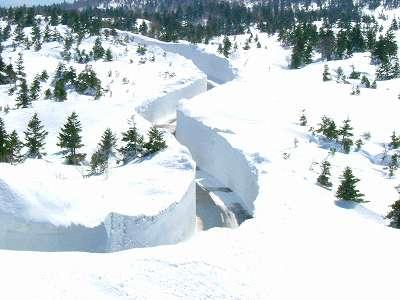 青森八甲田山「八甲田・十和田ゴールドライン」的「雪之迴廊」開通!   MY PACE TRAVEL