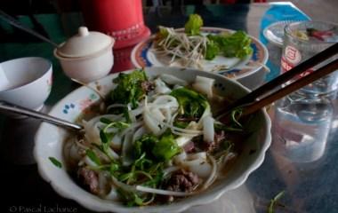 vietnam2009_20090313_3926