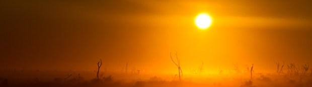 Sunrise over a foggy field in Eighty Miles Beach