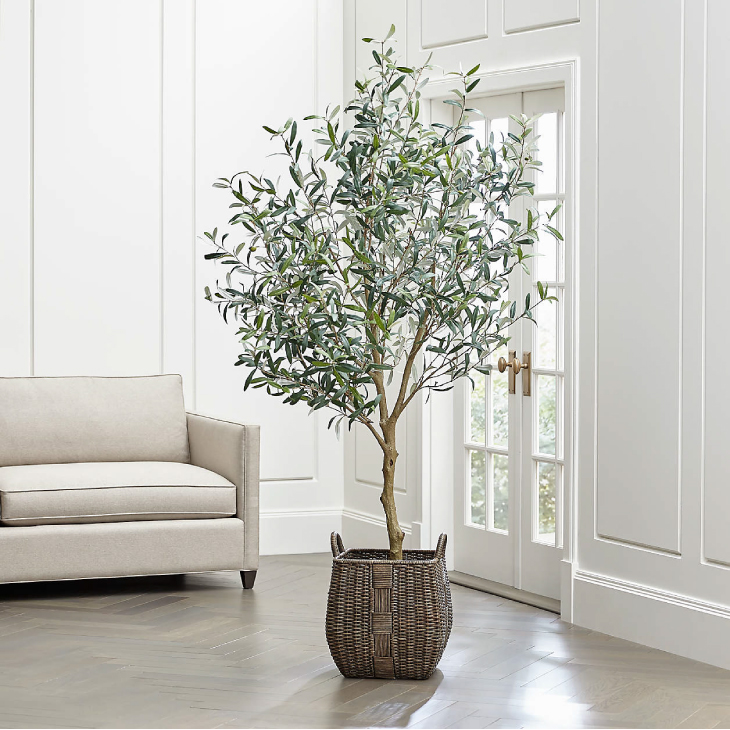 Crate and Barrel Faux Olive Tree