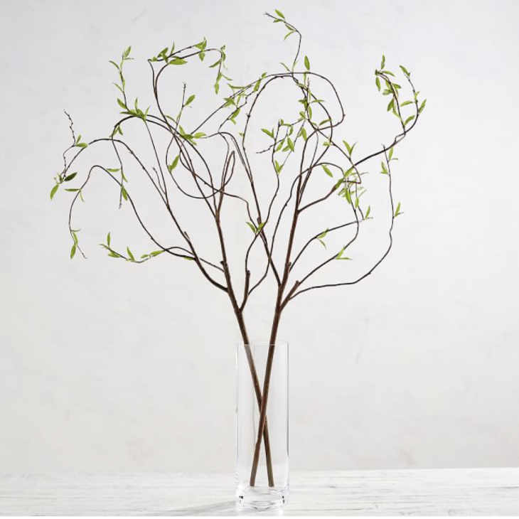 Pottery Barn Curling Willow Branch