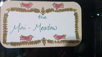 the Mini-Meadow