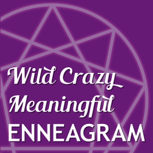 Wild Crazy Meaningful Enneagram logo
