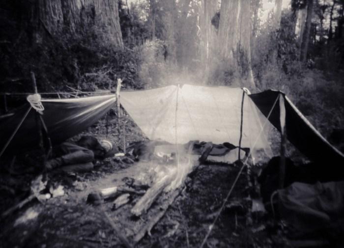 Shelter most basic