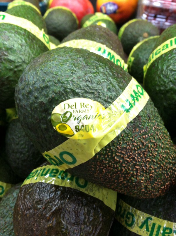 Pacifica Groves Growing Avocados in the California Sun