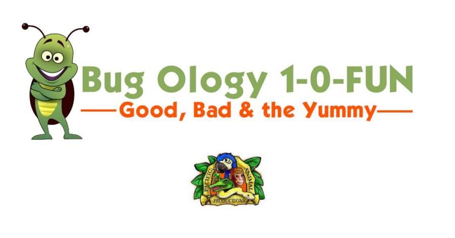Bug Ology at Glenn County Fair