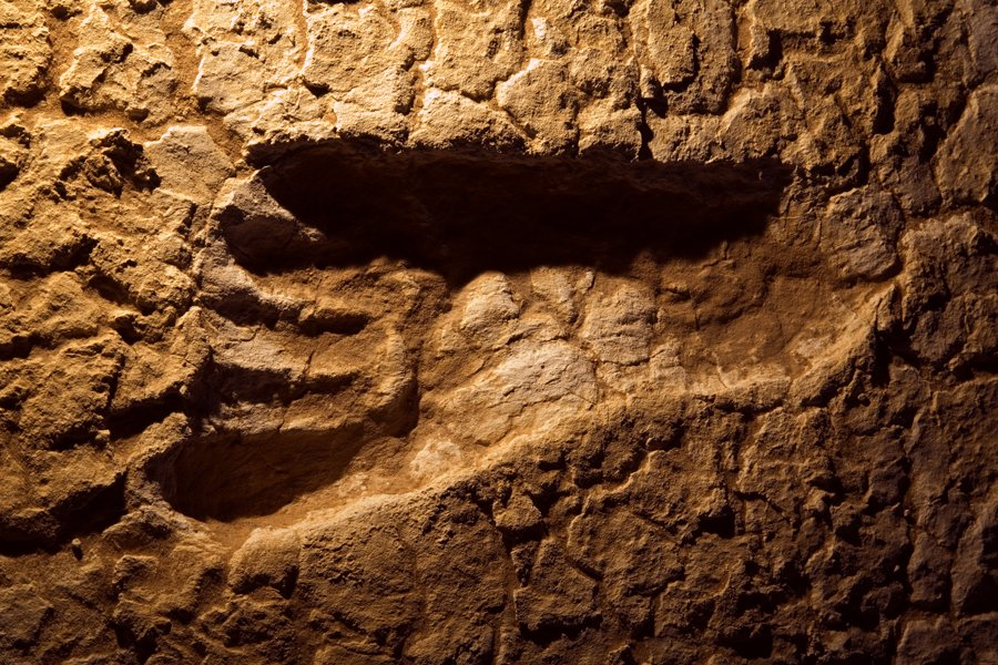 Does this 20,000 years old footprint belong to the fastest man in History?