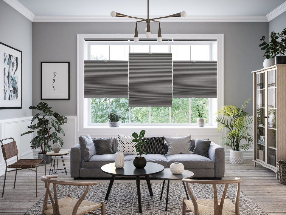 top down bottom up blackout cellular shades in living room