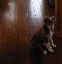 Reclaimed Wood Flooring Reclaimed Wood Floors