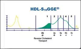 HDL496
