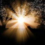 midsummer sunlight