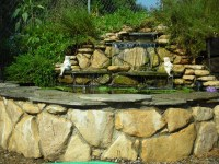 Backyard Pond Construction - Backyard Pond Ideas