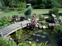 Pond Repair: How to find and repair a pond leak - Pond Repair