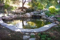 Large backyard pond - Pacific Ponds & Design - Custom Pond ...