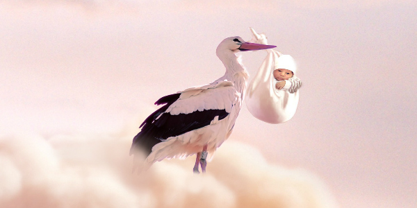 Picture of a stork holding a baby on a cloud, representing the result of in vitro fertilization and IVF in China