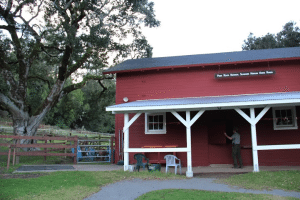 Phil Straub closes the barn at the Point Reyes National Seashore Morgan Horse Ranch. Photo by Molly Oleson.